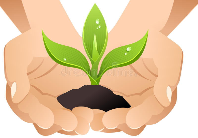Download Vector Hands With Sprout. Royalty Free Stock Photography - Image: 10365767