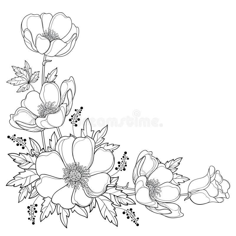 Vector Handzeichnungs-Eckenblumenstrauß mit Entwurf Anemone Blume oder Windflower, Knospe und Blatt im Schwarzen lokalisiert auf  lizenzfreie abbildung