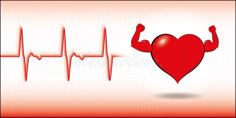Vector healthy heart. Vector illustration of healthy heart with cardiogram stock illustration