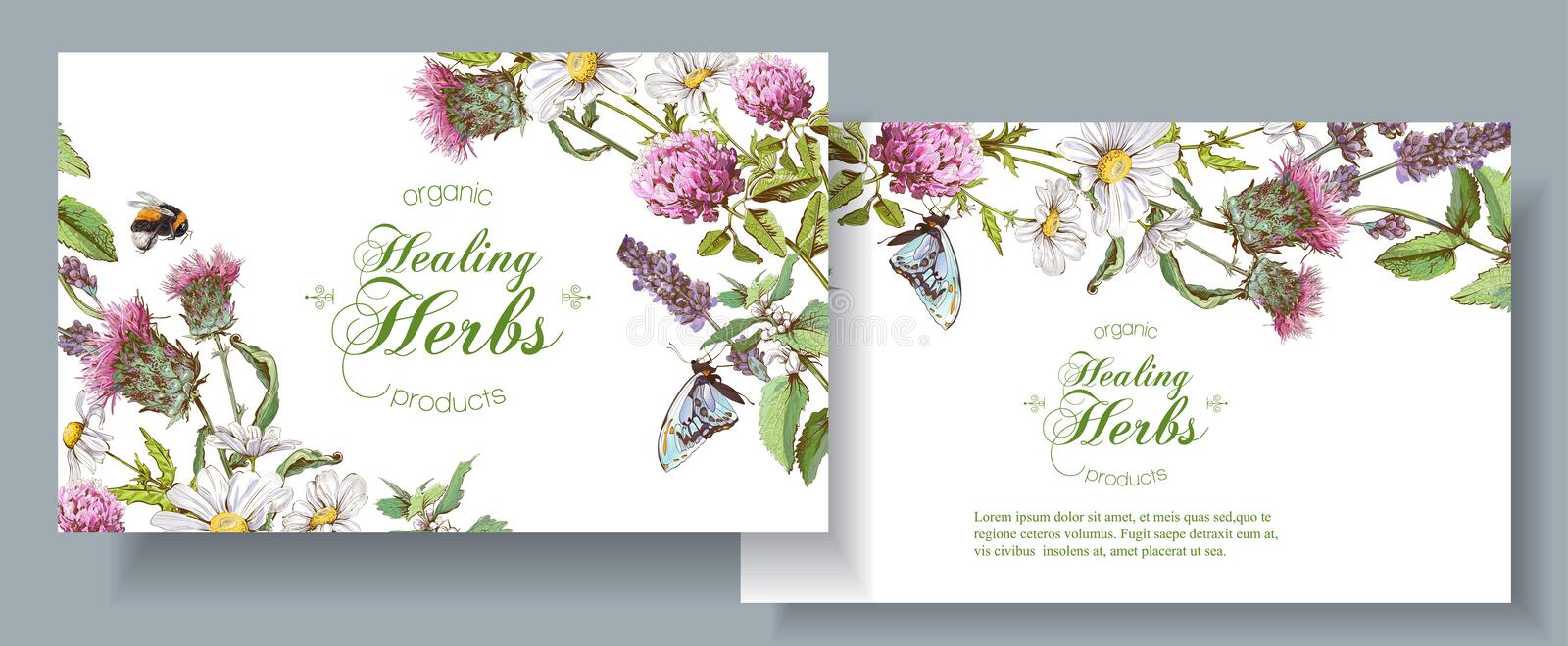 Vector herbal banners stock illustration