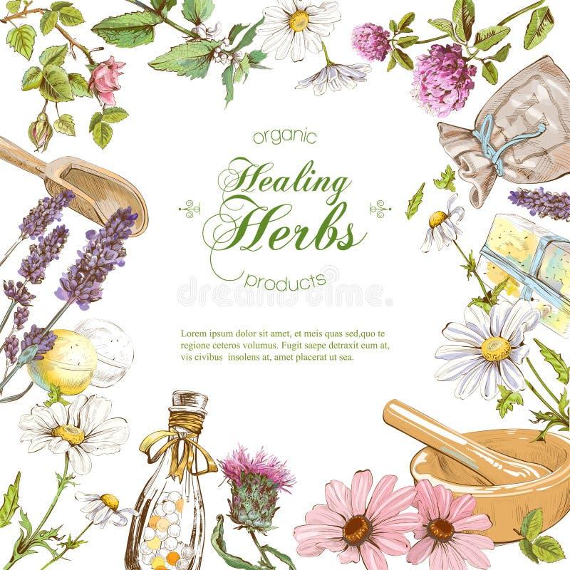 Vector herbal frame stock illustration