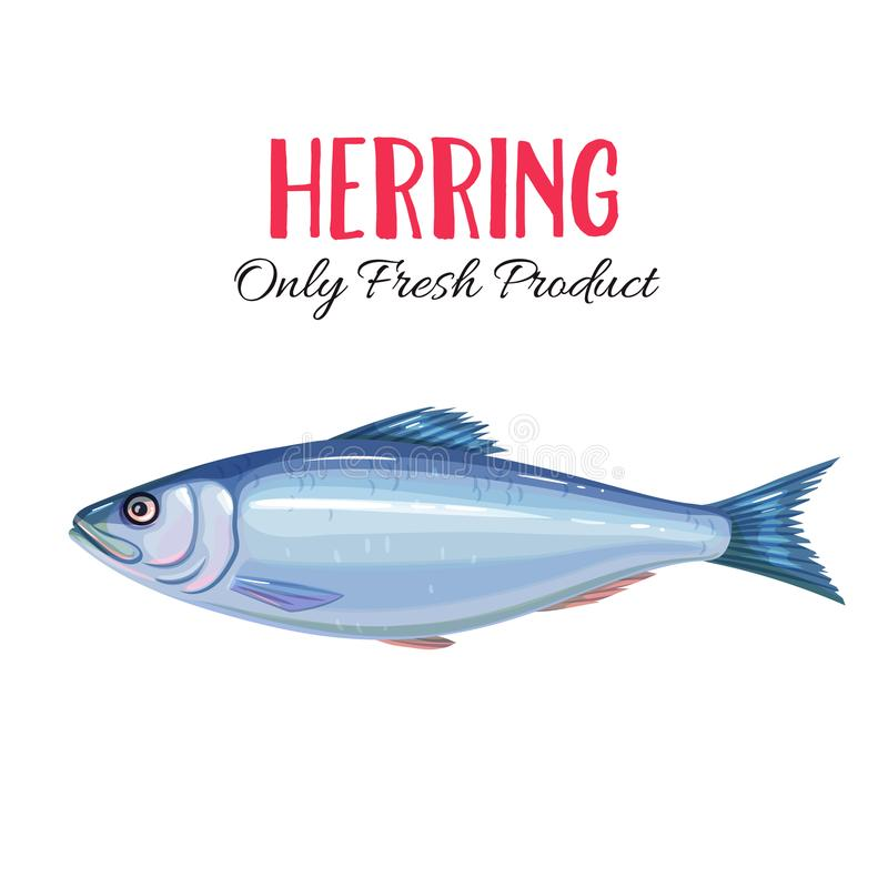 Vector herring. I. Con badge fish for design seafood packaging and market royalty free illustration