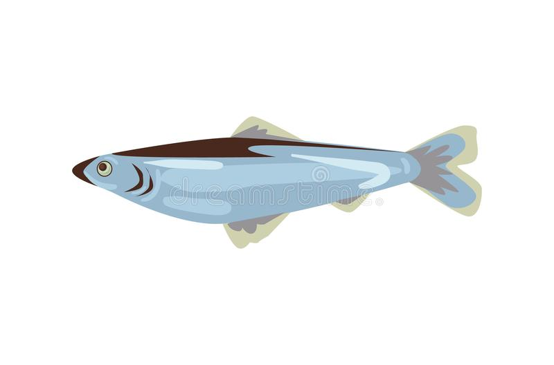 Vector herring isolated. Fish symbol vector illustration. Herring icon isolated on white background royalty free illustration