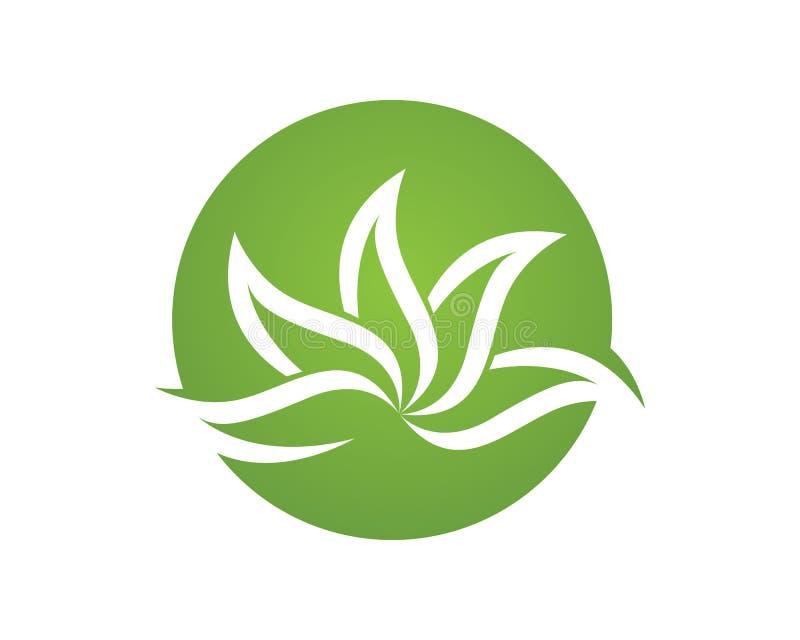 Vector het embleemontwerp van het boomblad, milieuvriendelijk concept