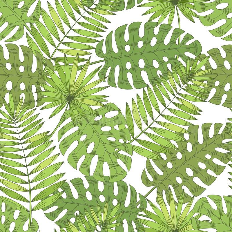 Vector het patroon van de van de achtergrond palmblad de grafische groene kleur naadloze schetsillustratie stock illustratie