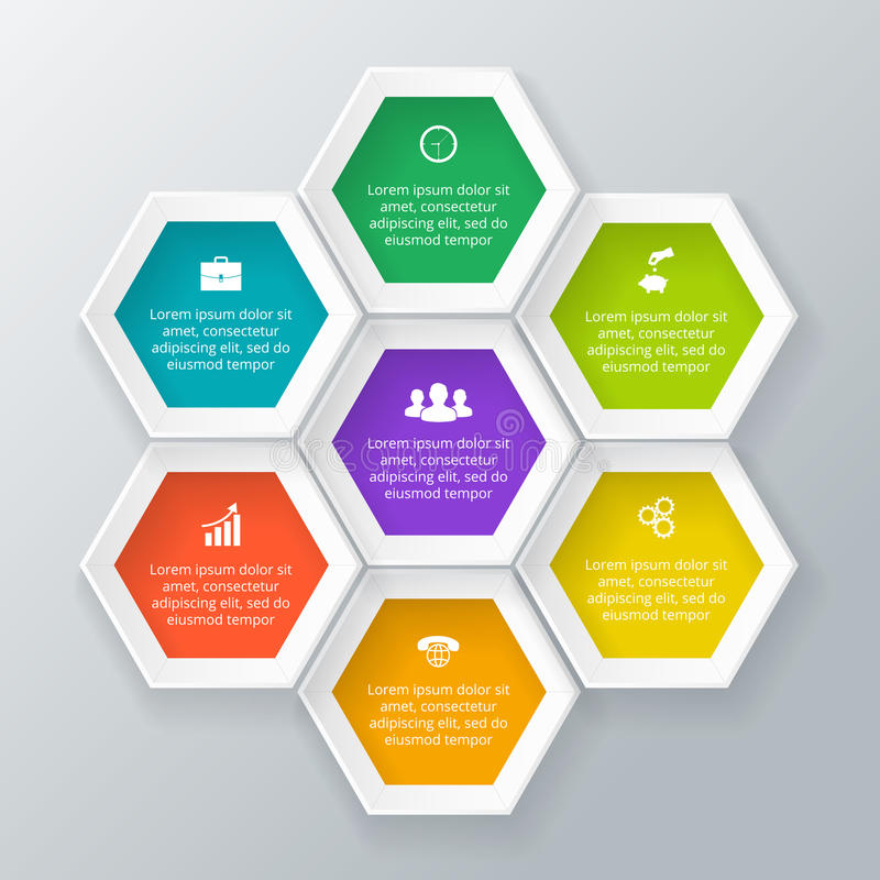 Vector hexagons for infographic. vector illustration