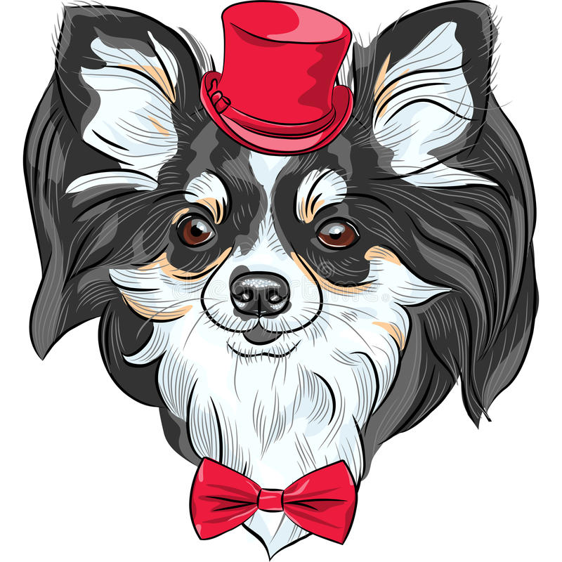 Vector hipster dog Chihuahua breed smiling. Color sketch of the cute hipster dog Chihuahua in the red hat with bow tie stock illustration