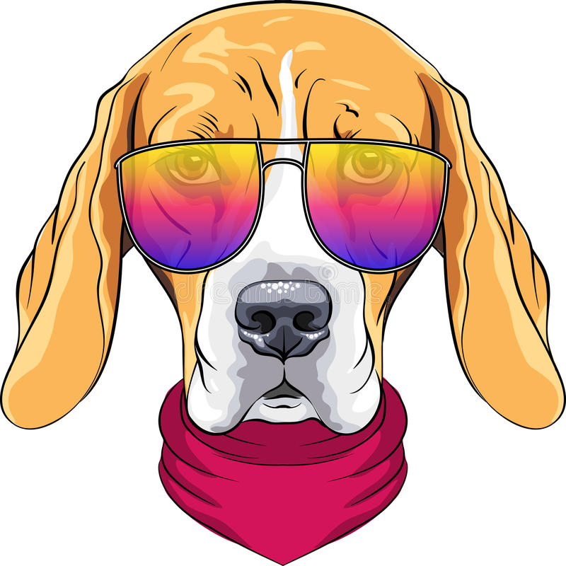Vector hipster serious dog Beagle in glasses. Vector hipster serious dog Beagle breed in red cravat and trendy two-color glasses royalty free illustration