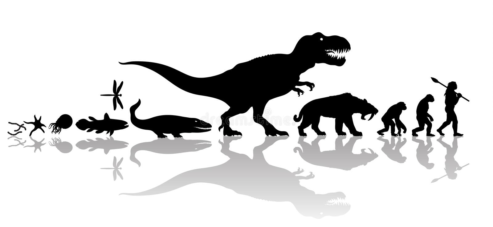 Evolution of life on Earth. Silhouette with transparent reflection isolated on white background. Vector history of life on Earth. Timeline of evolution from royalty free illustration