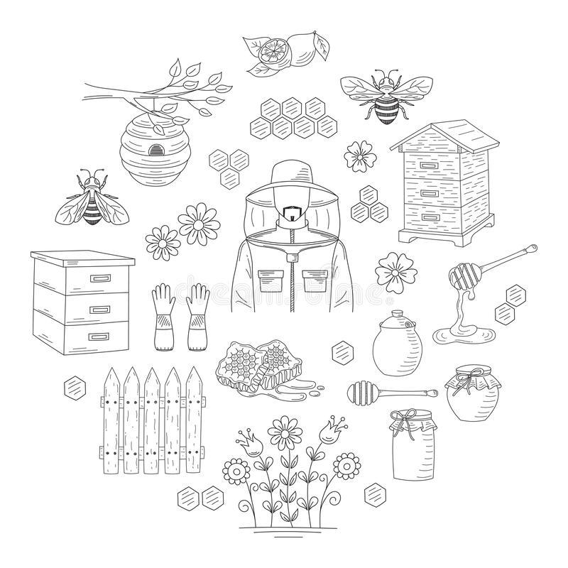 Vector honey collection with beekeeping elements stock illustration
