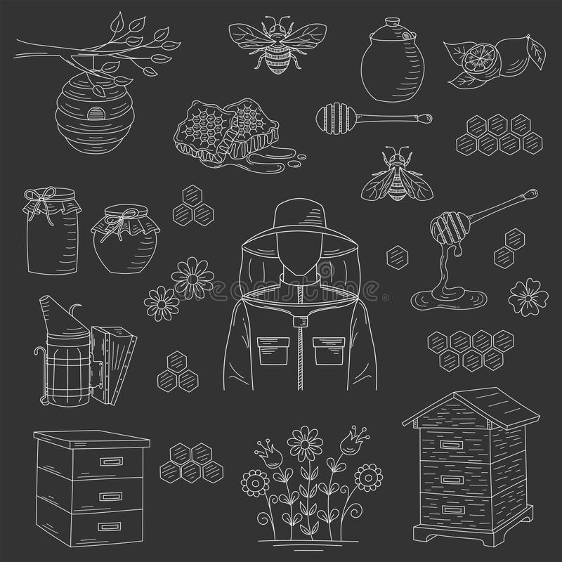 Vector honey collection with beekeeping elements vector illustration