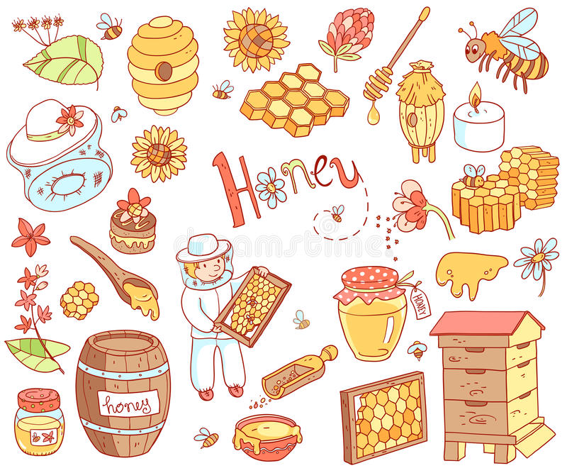 Vector honey element doodle set with beehive, beekeeper, flowers vector illustration