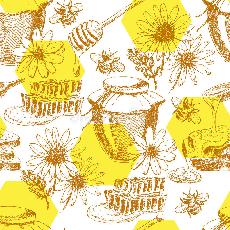 Vector honey seamless pattern. hand drawn jar, spoon, stick, cells, camomile. ink sketch of organic nature products. Vector honey seamless background. hand drawn royalty free illustration
