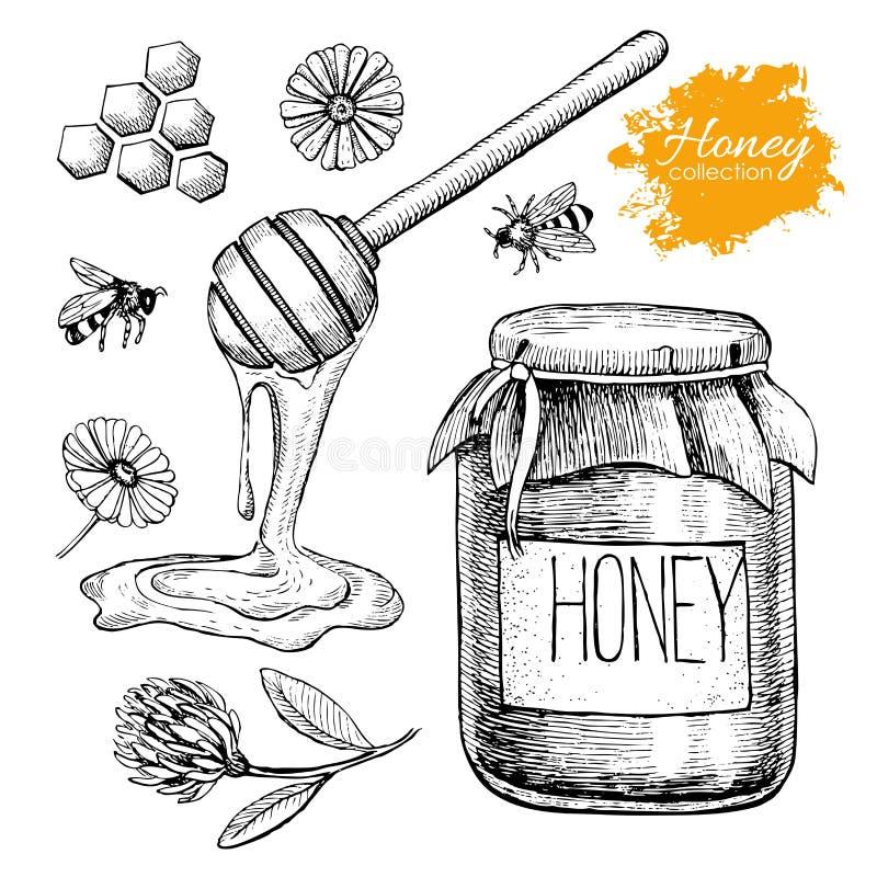 Vector honey set. Vintage hand drawn illustration. royalty free illustration