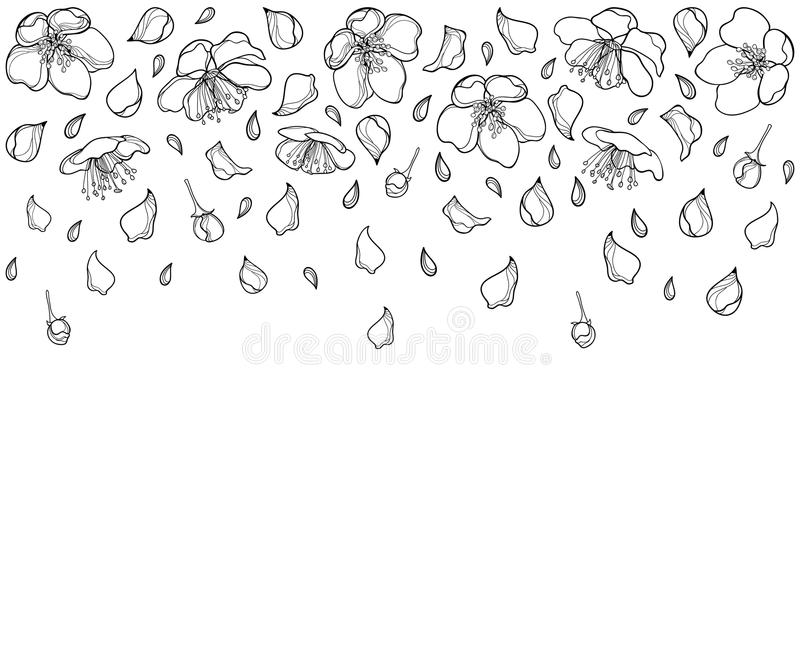 download vector horizontal composition with outline falling apple flower petal and bud in black isolated