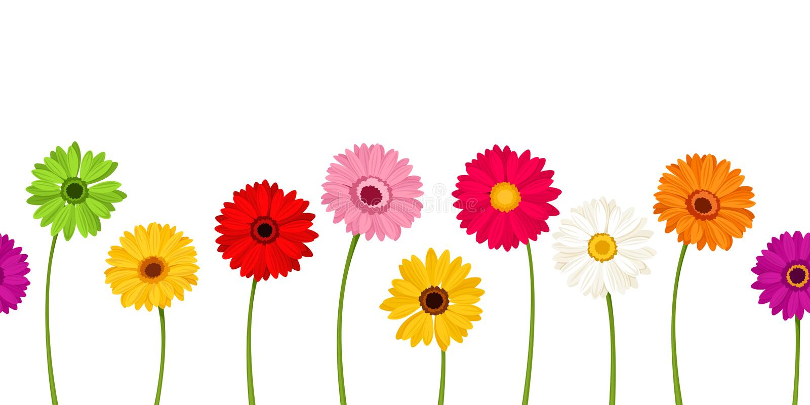 Horizontal seamless background with colorful gerbera flowers. Vector illustration. Vector horizontal seamless background with colorful gerbera flowers royalty free illustration