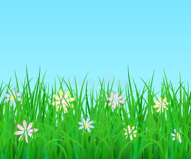 Vector horizontale eindeloze grens met groene gras en bloemen vector illustratie