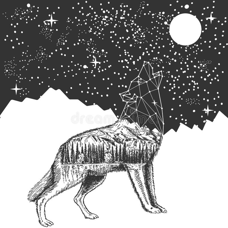 Vector howling wolf and night sky tattoo t-shirt print design stock illustration