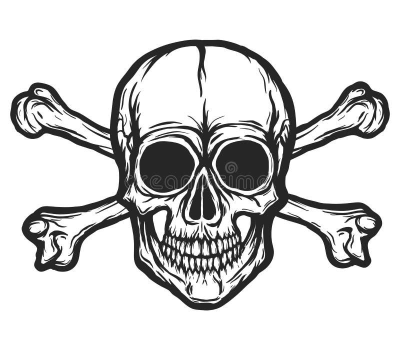 Vector humano del cráneo libre illustration