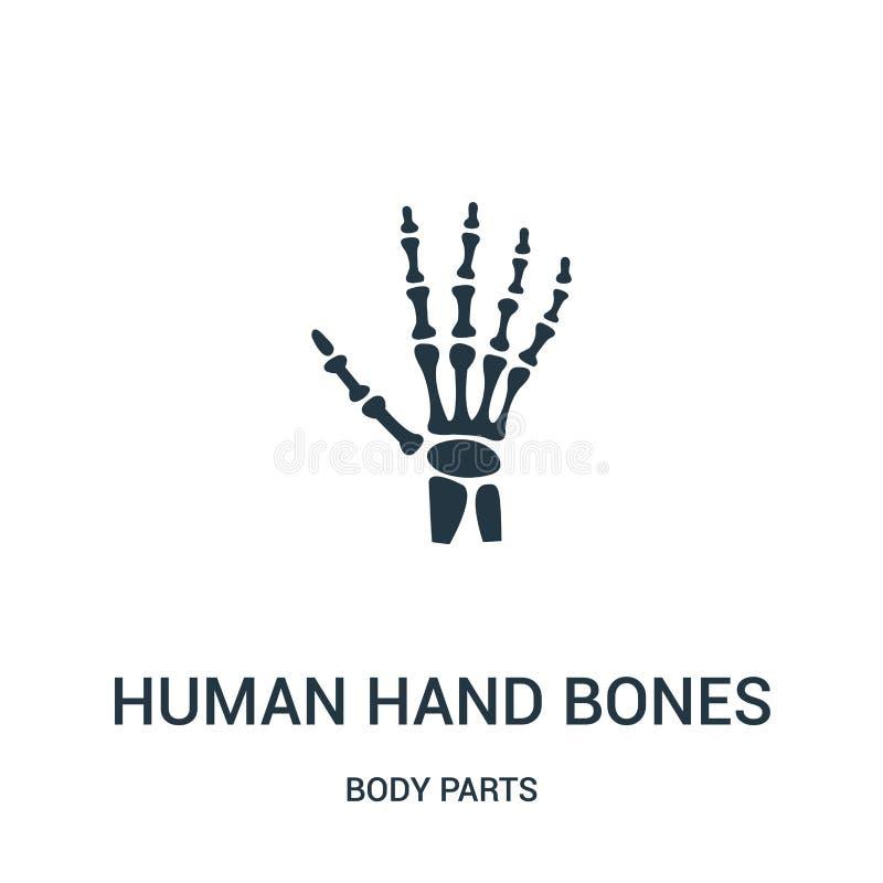 vector humano del icono de los huesos de mano de la colección de las partes del cuerpo Línea fina ejemplo humano del vector del i stock de ilustración