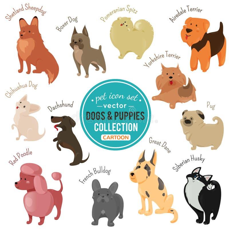 Vector i cani e cuccioli che descrivono il colore differente della pelliccia e razze illustrazione vettoriale