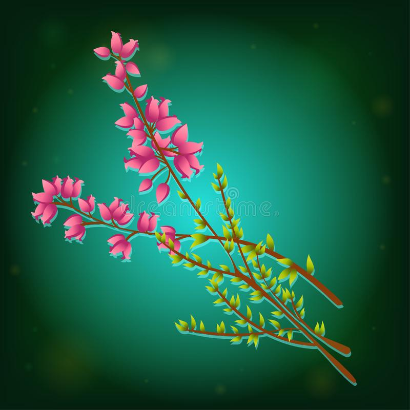 Icon of Calluna Vulgaris or Heather. Vector icon of Calluna Vulgaris, Heather or Ling. The Native Flower of Norway. Isolated elements on green background vector illustration