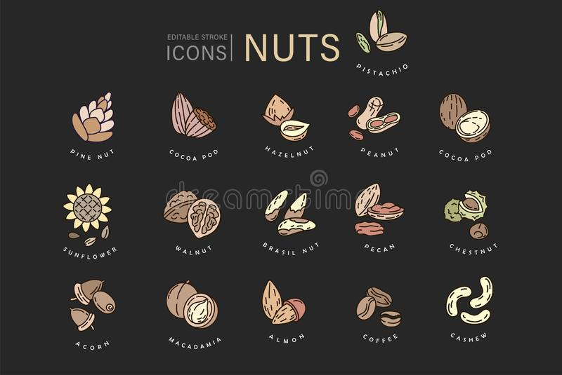 Vector icon and logo for nuts and seeds. Editable outline stroke size. Line flat contour, thin and linear design. Simple. Icons. Concept illustration. Sign vector illustration