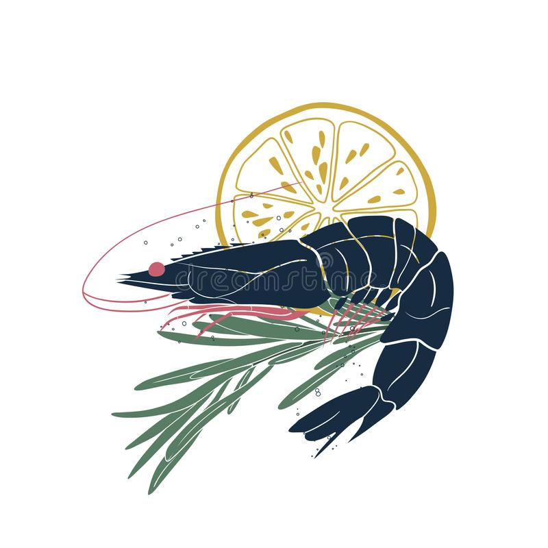 Vector icon with shrimp, rosemary and lemon slice isolated on white background. Seafood illustration for your design.  royalty free illustration