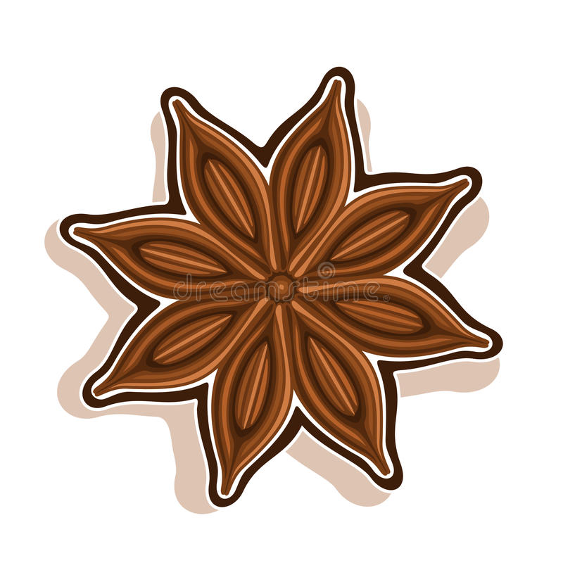Vector icon for Star Anise stock illustration