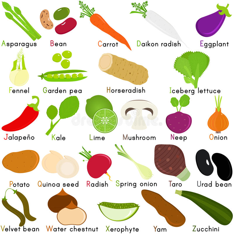 Vector Icons of Vegetable with Alphabet A to Z stock illustration