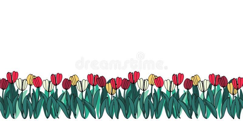 Vector il confine senza cuciture con i fiori del disegno della mano, l'illustrazione botanica artistica luminosa multicolore, flo illustrazione vettoriale