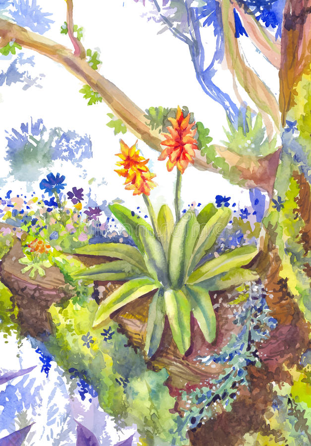 Vector il fiore dell'acquerello, crescente su un albero illustrazione vettoriale