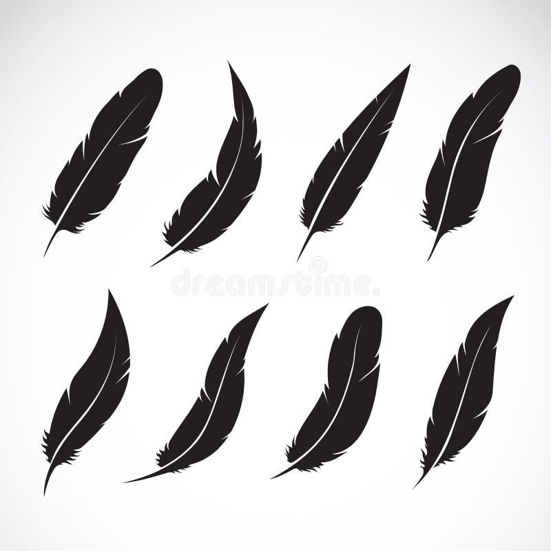 Vector il gruppo di piuma nera su fondo bianco Illustrazione stratificata editabile facile di vettore illustrazione di stock