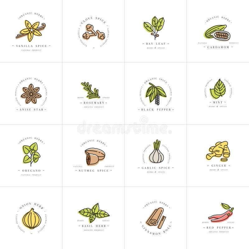 Vector il logo variopinto e gli emblemi dei modelli di progettazione stabilita - erbe e spezie Icona differente delle spezie Logo royalty illustrazione gratis