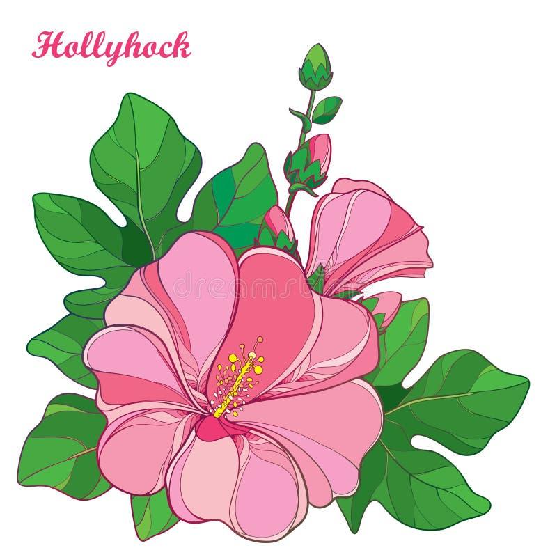 Vector il mazzo con il rosea del Alcea del profilo o il fiore della malvarosa in rosa pastello, germoglio e foglia verde su fondo illustrazione vettoriale