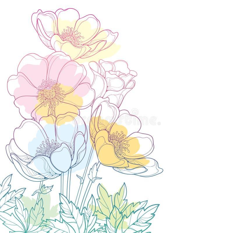 Vector il mazzo dell'angolo del disegno della mano con il fiore o Windflower dell'anemone del profilo, germoglio e foglia in past royalty illustrazione gratis