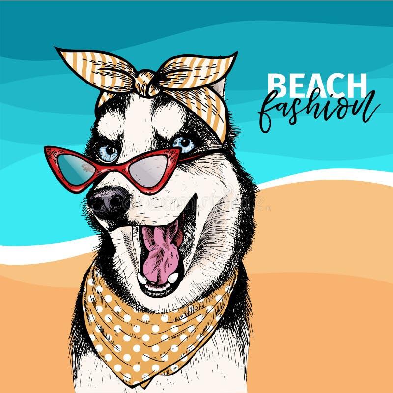 Vector il ritratto degli occhiali da sole d'uso del cane del husky siberiano e di retro bandana Illustrazione di modo di estate M illustrazione vettoriale