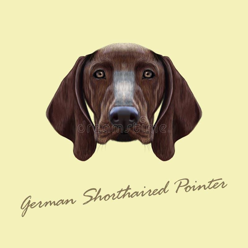 Vector il ritratto illustrato del cane tedesco del puntatore dai capelli corti illustrazione di stock