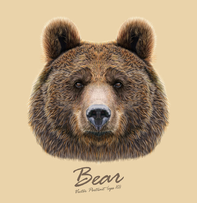 Vector Illustrated Portrait of Bear on beige background stock illustration