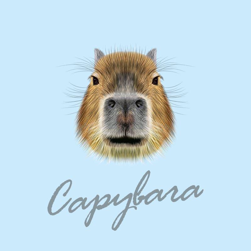 Vector Illustrated Portrait of Capybara. royalty free stock photo