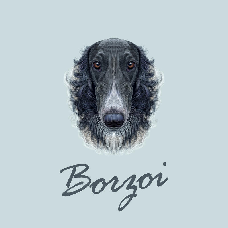 Vector Illustrated portrait of Russian Borzoi dog. Cute face of black greyhound domestic dog on blue background stock illustration