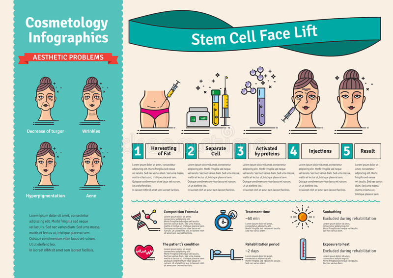 Vector Illustrated set with cosmetology stem cell facelift. Infographics with icons of medical cosmetic procedures stock illustration