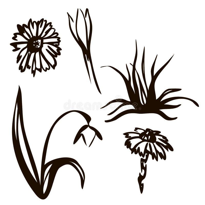Vector illustratie De lente geplaatst die in zwarte lijn wordt getrokken Sneeuwklokjes, vogels, de inschrijvingslente lettering T stock illustratie