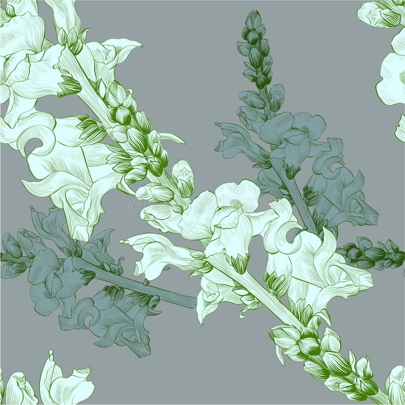 Vector illustratie Een tak met bloemen en knoppen Naadloos patroon leeuwebek stock illustratie