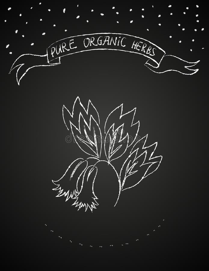 De bloem van het krijt op bord stock illustratie