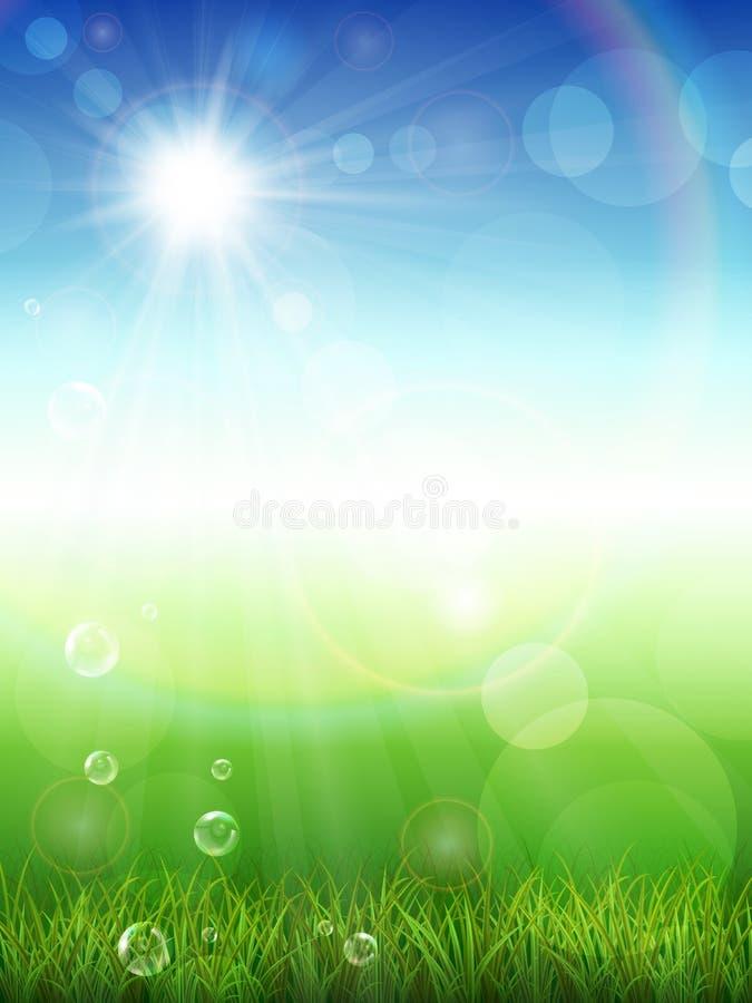 De achtergrond van de zomer met groen gras royalty-vrije illustratie