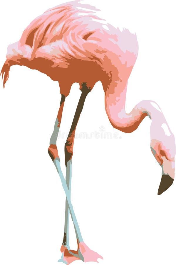 Vector illustratie van een roze flamingo stock afbeelding
