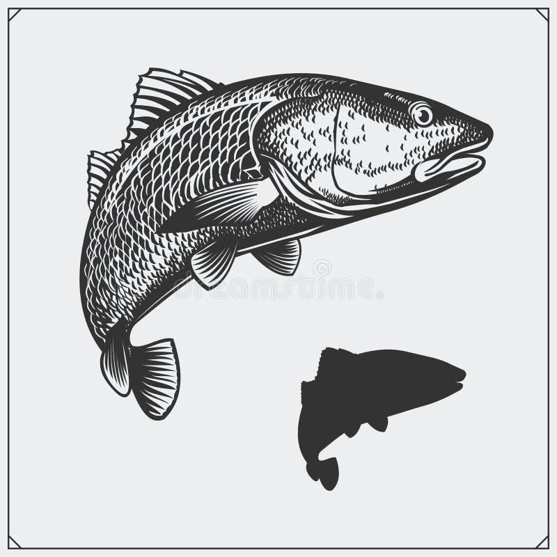 Vector illustratie van een vis Silhouet van vissen stock illustratie
