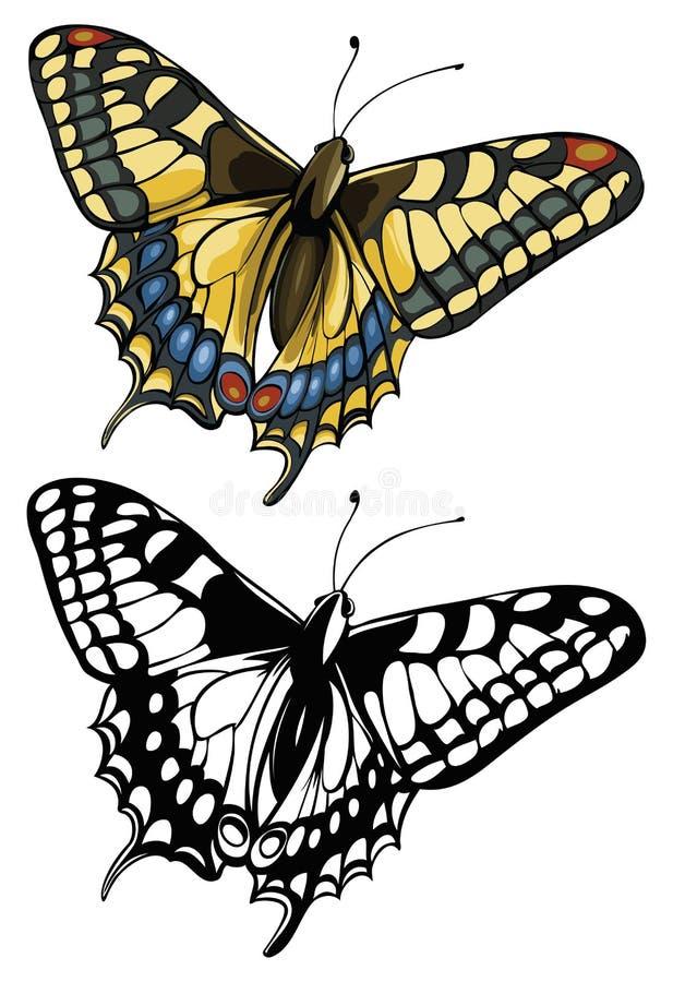 Vector illustratie van een vlinder Swallowtail (Pap vector illustratie