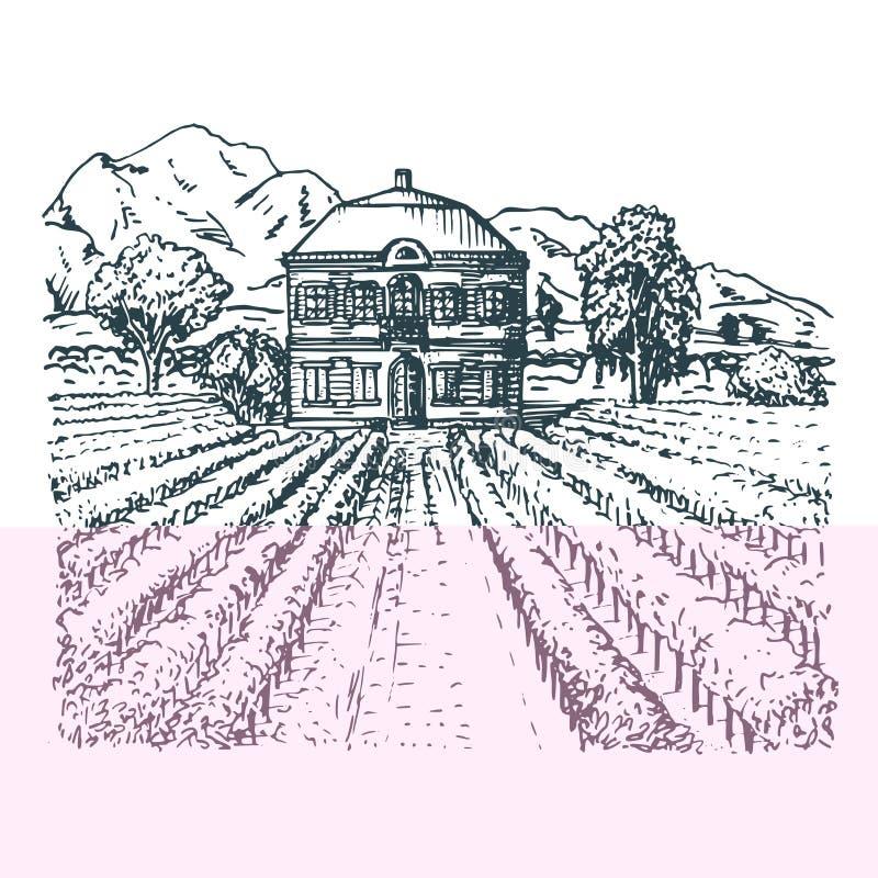 Vector illustratie van wijngaard Handschets van villa, hoeve in gebieden en heuvels Getrokken mediterraan landschap vector illustratie